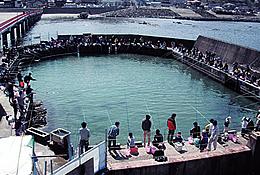 2-海洋釣り堀体験